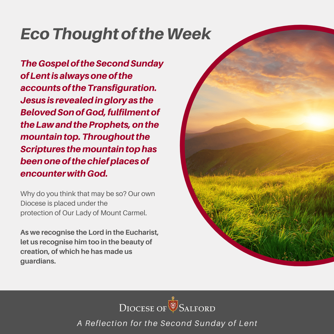 Eco Thought of the Week 28th of Feb 2021