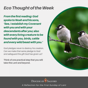 Eco Thought of the Week 21st of Feb 2021